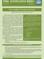 Drivers of Inflation: From Roots to Regressions